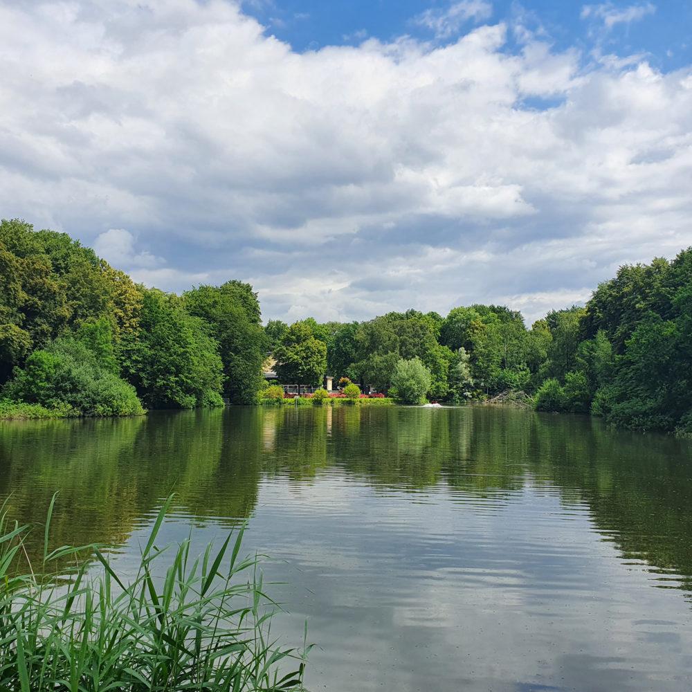 Blick über den Teich im Nienhausen Busch auf das Waldhaus.